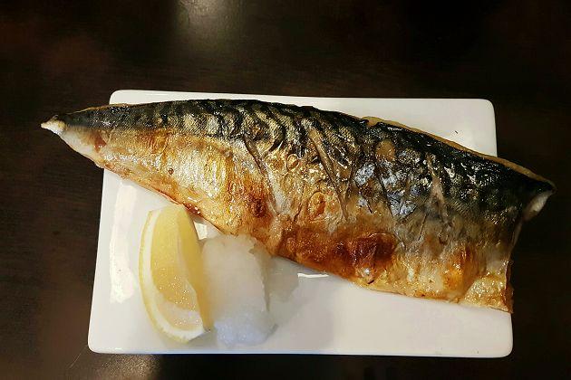 挪威鯖魚 1